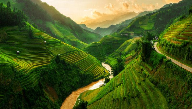 vietnám rizsterasz