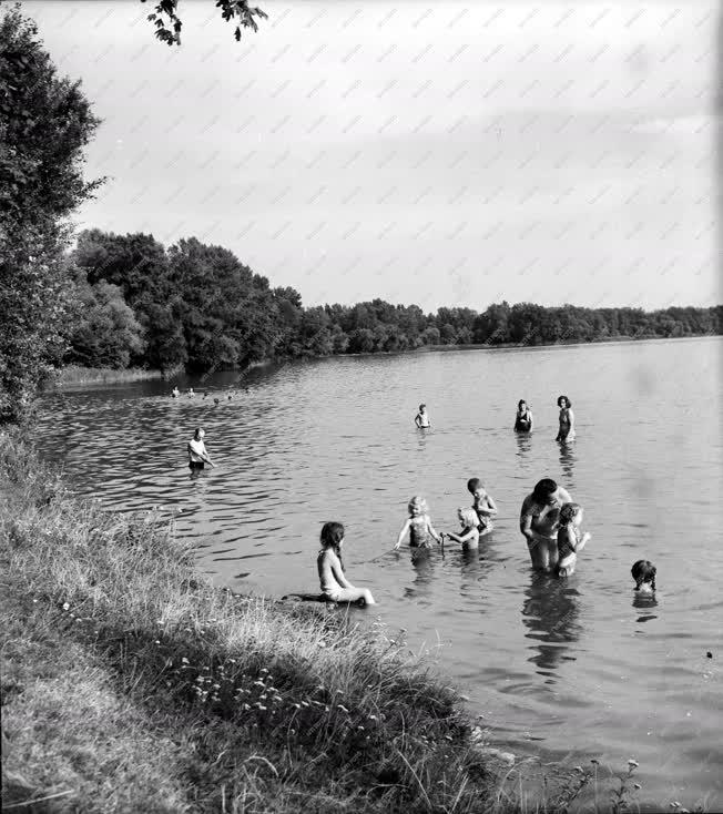 tatai öreg tó fürdőzők