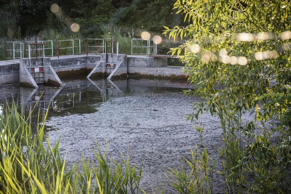 Püspökfürdő-kiszáradt-tó mti