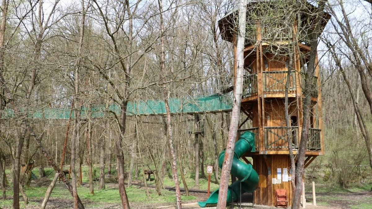 Ipolytarnóci Ősmaradványok Látogatóközpont Lombkorona Tanösvénye
