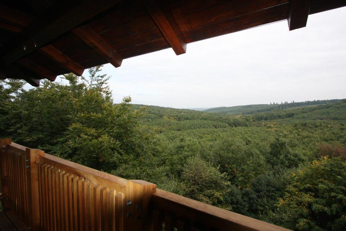 Lengyel-Annafürdő lombkorona sétány és kilátó