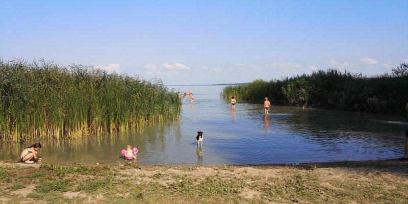 Keszthelyi Kutyás Park és Piknikkert